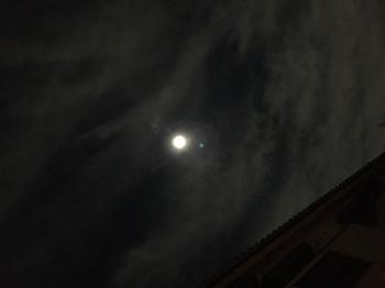 十六夜.JPG